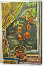 Plant In A Window Acrylic Print by Ellen Howell