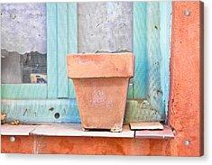 Plant Pot Acrylic Print by Tom Gowanlock