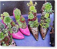 Plants In Pumps Acrylic Print