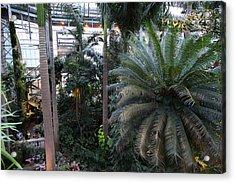 Plants - Us Botanic Garden - 011311 Acrylic Print by DC Photographer