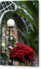 Plants - Us Botanic Garden - 01135 Acrylic Print