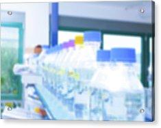 Plastic Bottles In Lab Acrylic Print