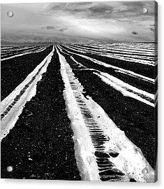 Plastic Tarp In A Field. Auvergne. France Acrylic Print