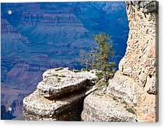Plateau In Canyon Acrylic Print by Nickaleen Neff