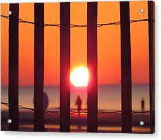 Acrylic Print featuring the photograph Play Through The Fence by Nikki McInnes
