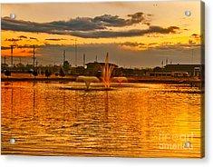 Acrylic Print featuring the photograph Playa Lake At Sunset by Mae Wertz
