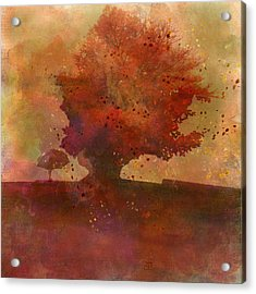 Playfall Acrylic Print by Jean Moore