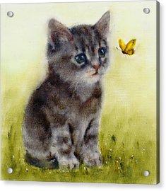 Playful Cat Art Print Acrylic Print
