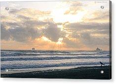 Playing At Sunset Acrylic Print