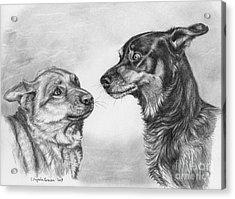 Playing Dog's Emotions Acrylic Print by Svetlana Ledneva-Schukina