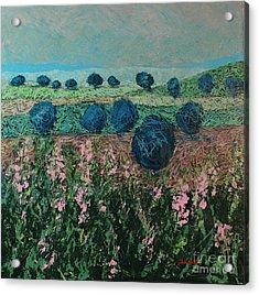 Pleasant Meadows Acrylic Print by Allan P Friedlander
