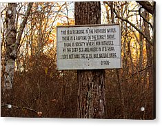 Pleasure In The Pathless Woods Acrylic Print