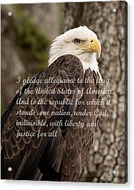 Pledge Of Allegiance Acrylic Print