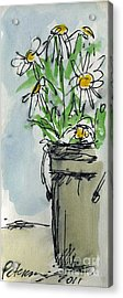 Plein Air Sketchbook. Ventura California 2011.  Tall Bucket Of Daisies From My Backyard Acrylic Print by Cathy Peterson