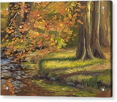 Plein Air - Trees And Stream Acrylic Print by Lucie Bilodeau