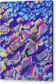 Plm Of Crystals Of Magnesium Citrate Drug Acrylic Print by Alfred Pasieka
