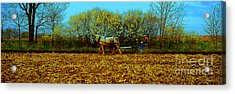 Acrylic Print featuring the photograph Plow Days Freeport  Tom Jelen by Tom Jelen
