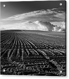 Plowed Field In Limagne. Auvergne. France Acrylic Print