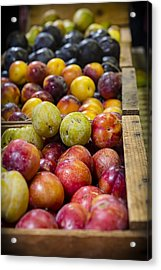 Plum Gorgeous Acrylic Print by Caitlyn  Grasso