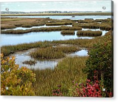Plum Island Marshes In Autumn 2 Acrylic Print