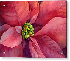 Plum Poinsettia Acrylic Print