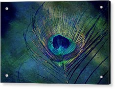 Plume Acrylic Print