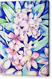 Plumerias Of Maui Acrylic Print