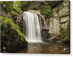 Plunging Waterfall Acrylic Print by Andrew Soundarajan