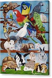 Pocket Pets Acrylic Print by Debbie LaFrance
