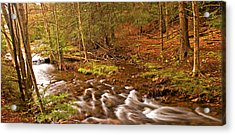 Pocono Mountain Stream Pennsylvania Acrylic Print by A Gurmankin