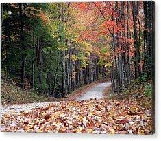 Poga Autumn Acrylic Print