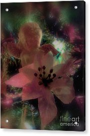 Acrylic Print featuring the photograph Poinsettia Angel by Roxy Riou