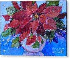 Poinsettia Acrylic Print by Diane Ursin