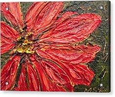 Poinsettia Sgraffito  Acrylic Print by Maria Soto Robbins