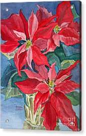 Poinsettias In Gold Acrylic Print