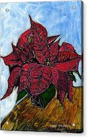 Poinsettias Acrylic Print by Robert Goudreau
