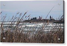 Point Judith Lighthouse Acrylic Print by Glenn DiPaola