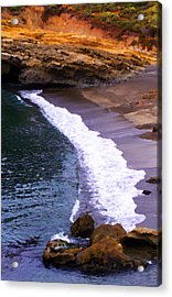 Point Lobos Acrylic Print by Ron Regalado