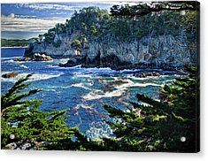 Point Lobos Acrylic Print by Ron White