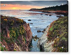 Point Lobos State Reserve 3 Acrylic Print by Emmanuel Panagiotakis
