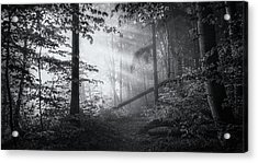 Point Of No Return ... Acrylic Print