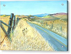 Point Reyes Country Road Acrylic Print by Asha Carolyn Young
