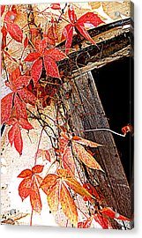 Poison Acrylic Print by Beverly Hammond