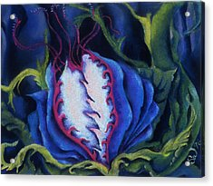 Poisonous Acrylic Print by Susan Will