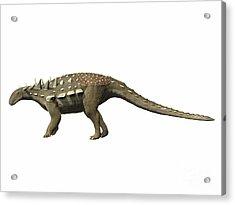 Polacanthus Foxii, Early Cretaceous Acrylic Print by Nobumichi Tamura