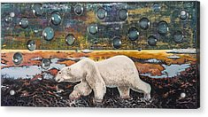 Polar Bear Displacement Replacement Acrylic Print