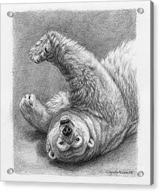 Polar Bear Stretch Acrylic Print by Svetlana Ledneva-Schukina