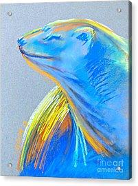 Polar Bear Sun Acrylic Print by Michelle Wolff