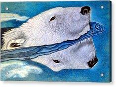 Polar Dip Acrylic Print