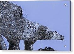 Polar Acrylic Print